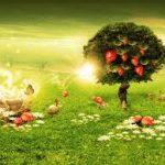 Abundant Dreams Empowerment Reiki